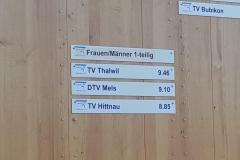 Regionalturnfest-obfelden-tea35-10